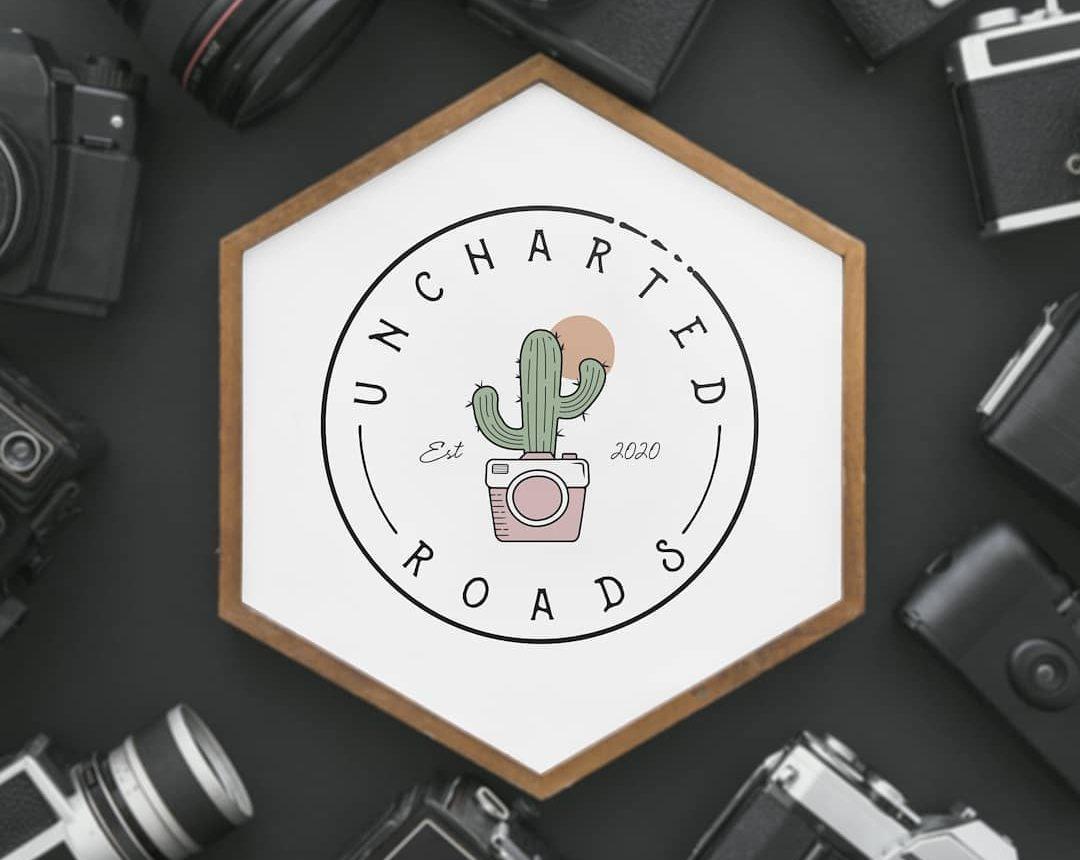 Cactus Camera online Logo design Mockup